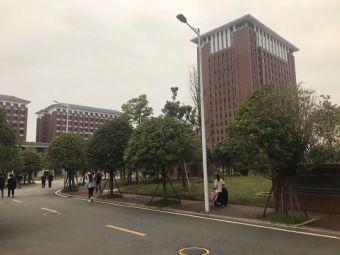 湖南艺术职业学院新校区停车场