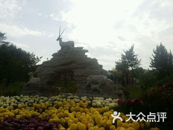 青藏高原野生动物园-图片-西宁景点-大众点评网