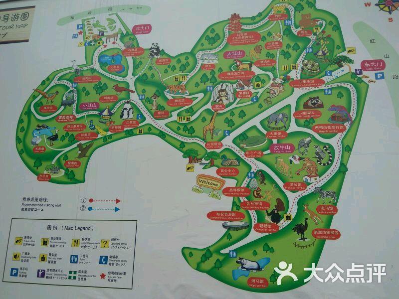 红山森林动物园图片 - 第9张