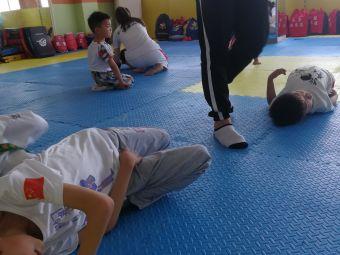 武盟散打跆拳道