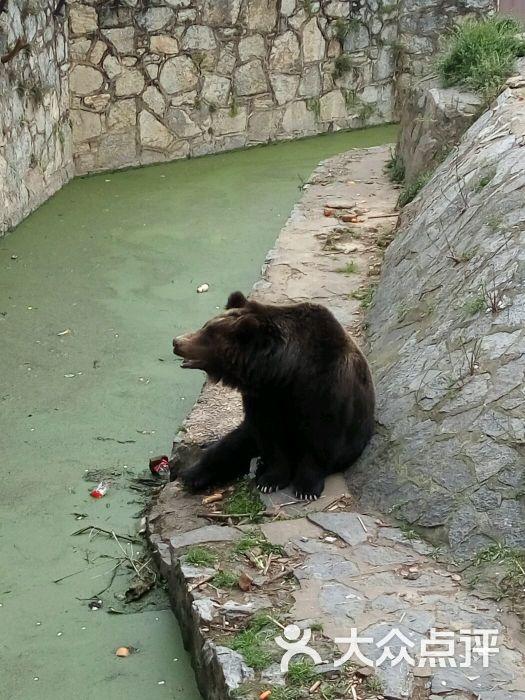 武汉动物园图片 - 第9张