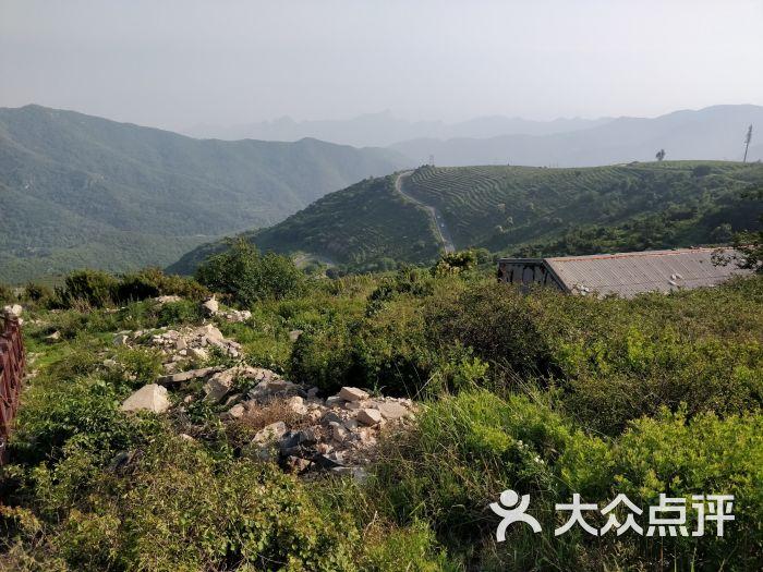 妙峰山森林公园图片 - 第2张图片