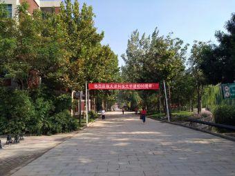 天津科技大學(泰達校區)