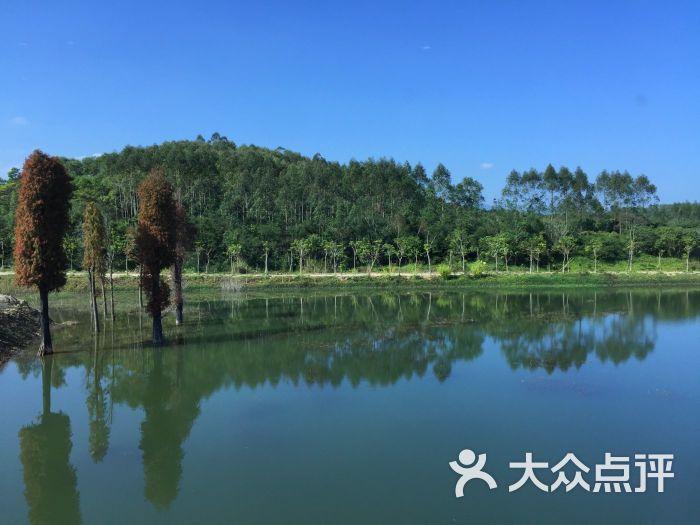 绿岛旅游山庄-图片-饶平县周边游-大众点评网