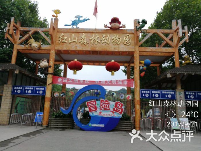 红山森林动物园图片 - 第1张