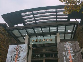 中国美术学院社会美术水平考试中心万松教育考级