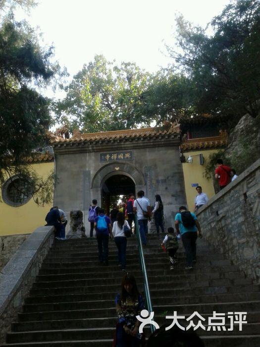 千佛山景区--其他图片-济南周边游-大众点评网