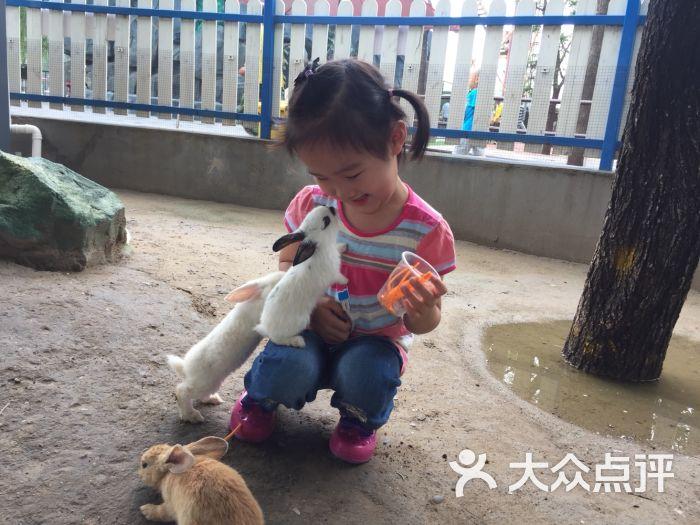 朝阳公园亲子动物园图片 - 第2张