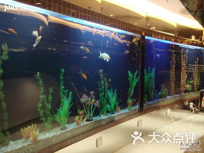 喜派吉欢乐自助餐厅鱼缸图片 - 第303张