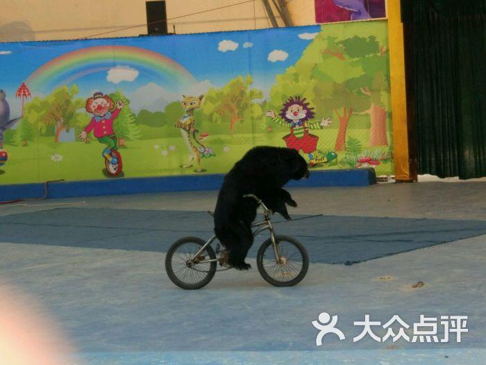东莞寮步香市动物园图片 - 第94张