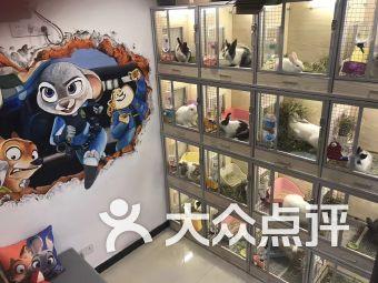 兔子林小宠物会所(静安区域店)