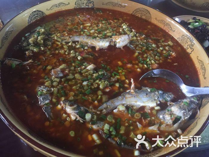 肖坝鸡胸鱼庄-美食-乐山生态-大众点评网肉天下红烧美食图片图片