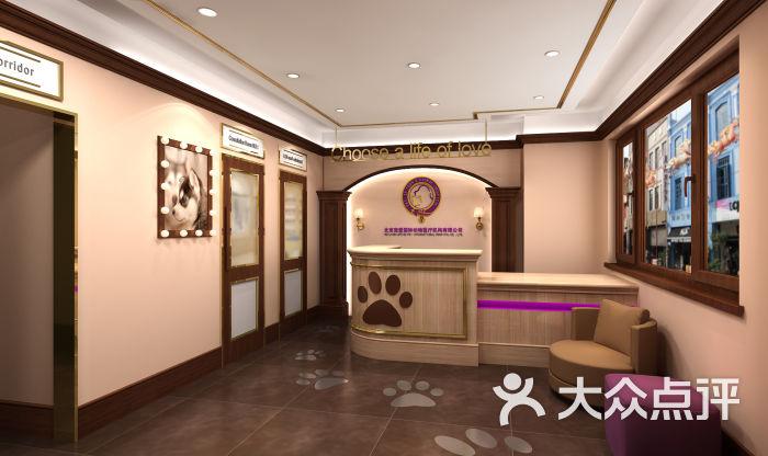 宠爱国际动物医院(科怡路店)前台图片 - 第7张