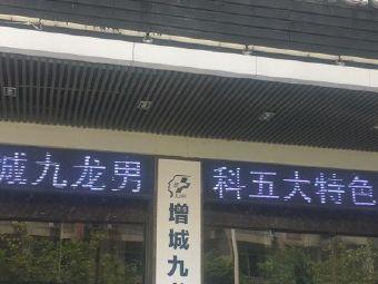 九龙男科医院