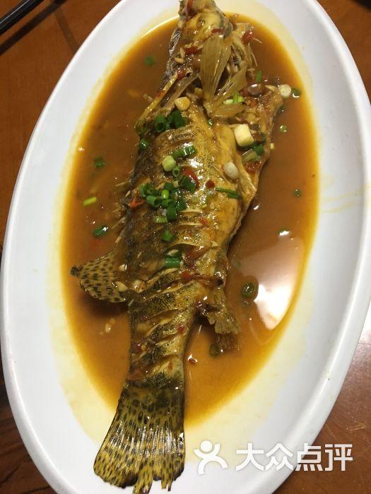 满意野生鱼馆-图片-千岛湖美食-大众点评网
