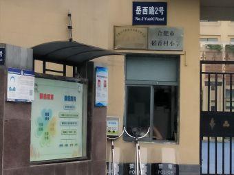 合肥稻香村小学(教育集团岳西路校区)