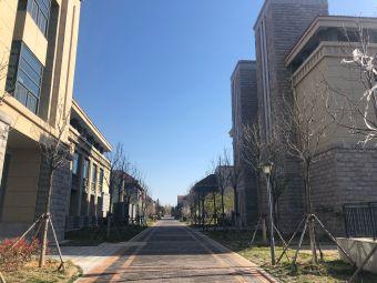 山东大学(青岛校区)