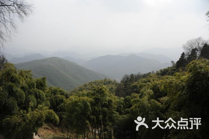 莫干山风景区图片 - 第2697张