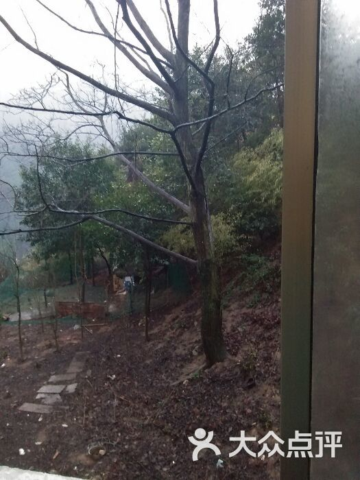 独秀宾馆-榕树叶子123456的相册-衡阳酒店-大众点评