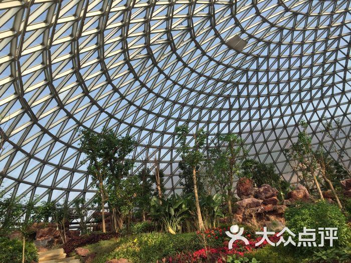 大阳山植物园--其他图片-苏州周边游-大众点评网