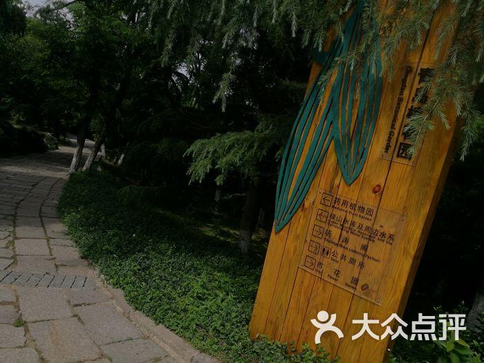 青岛植物园图片 - 第1张