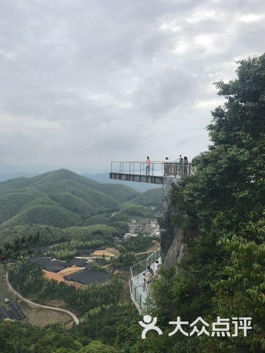 梅花山中国虎园图片第1张