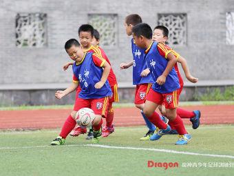 龙神青少年足球训练营