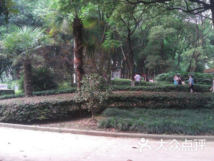 武汉动物园景点图片 - 第99张