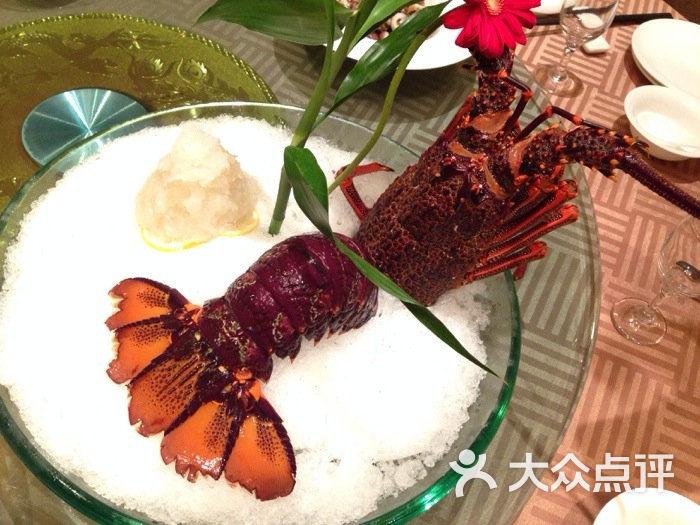 苏海华大酒店-澳龙刺身图片-苏州美食-大众点评网