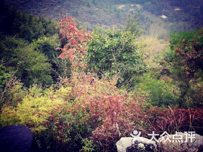 竹林长寿山景区-图片-巩义市周边游-大众点评网