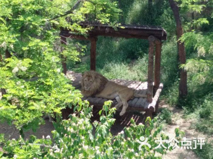 石家庄动物园图片 - 第222张