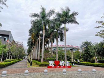 广东岭南职业技术学院清远校区(清远校区)