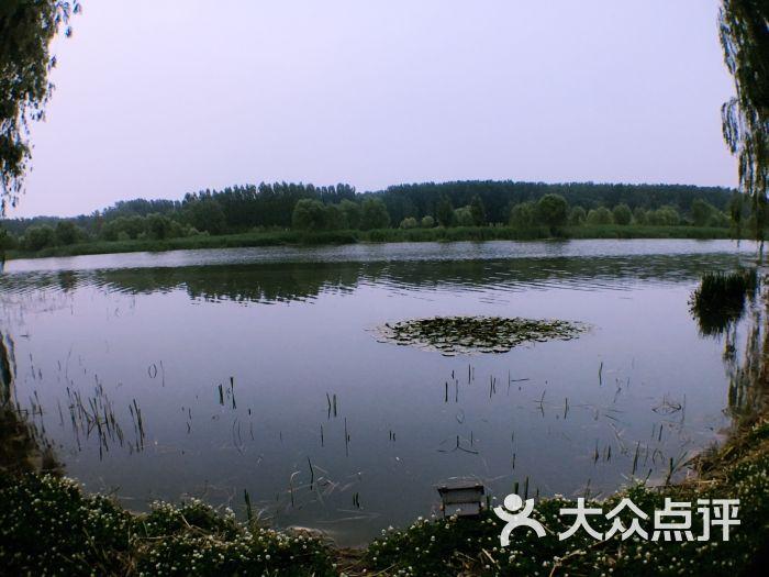 减河湿地风景区图片 - 第35张