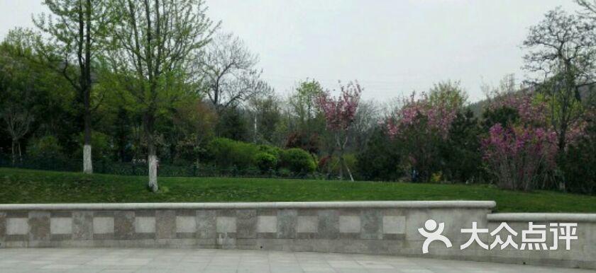 青岛植物园图片 - 第59张