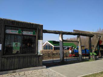 金湖·水上森林公园游客服务中心