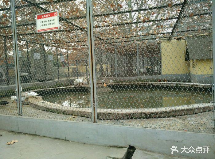 渭滨公园动物园图片 - 第48张
