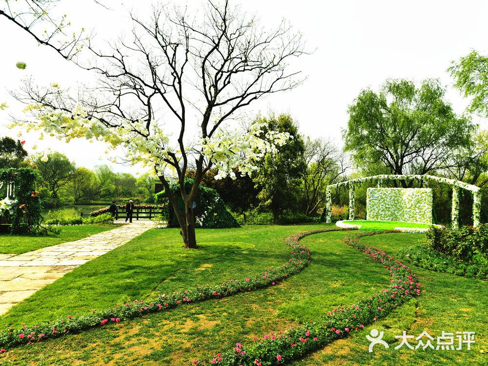 婚礼定制  布置 迎宾区:迎宾背景 迎宾区布置:森系植物墙,森系小木屋