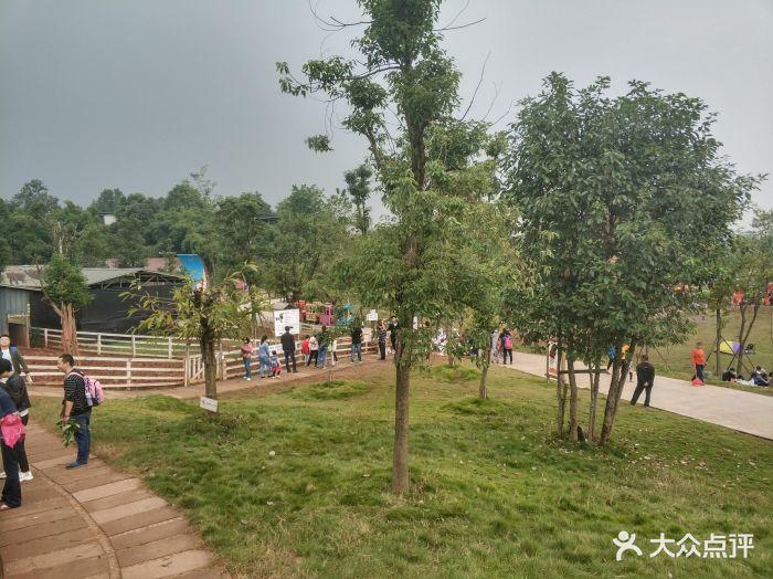 成都童话森林乐园图片 - 第3张