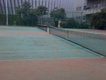 山东大学-网球场