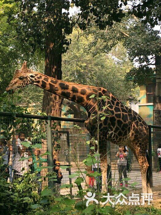 北京动物园科普馆