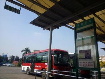 碧桂花城公交站场