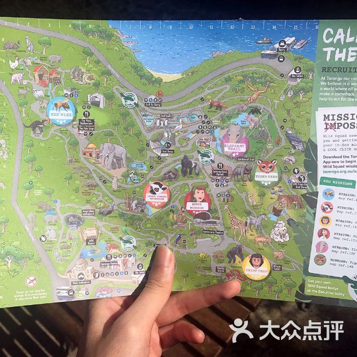 塔龙加动物园图片-北京公园-大众点评网