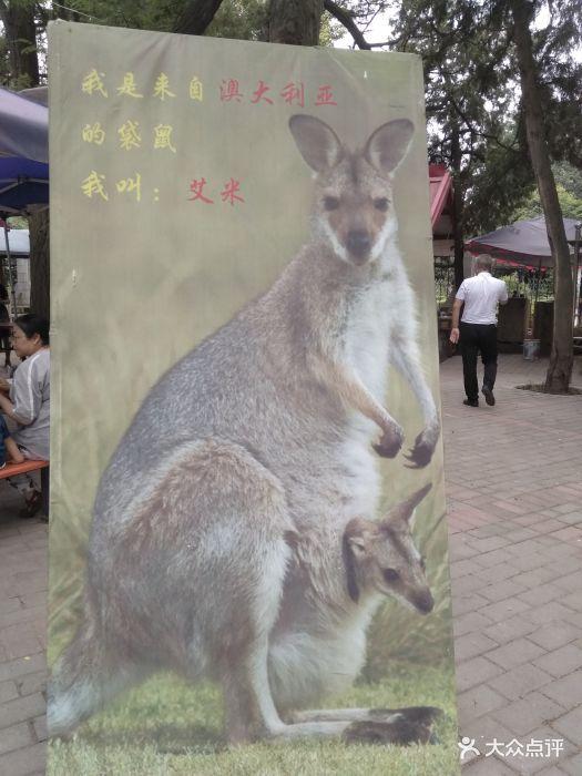 渭滨公园动物园图片 - 第1张