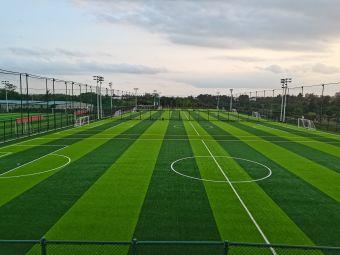大容足球公园