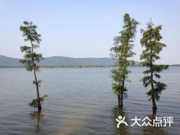 尚湖湿地公园图片