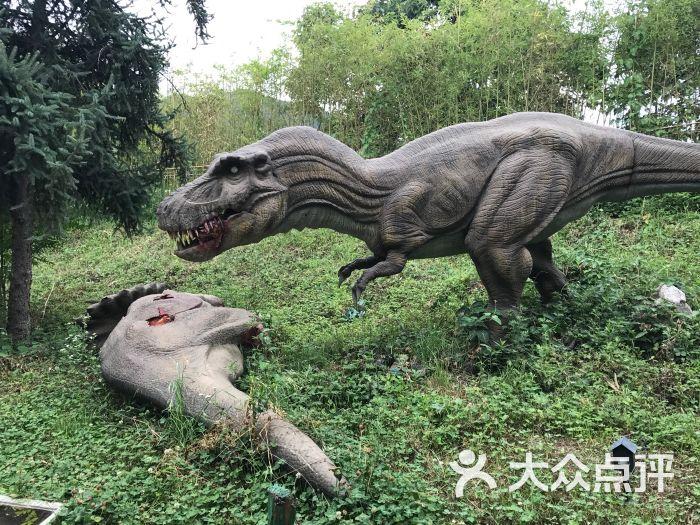 西安秦岭野生动物园图片 - 第635张