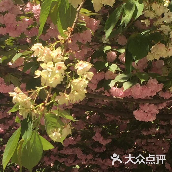 西安理工大学东区图片郑州乒乓球场校区-曲江u3dv图片图片