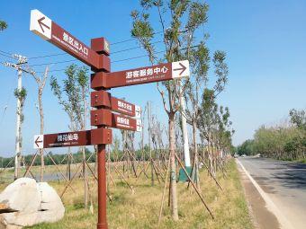 黄河口东营孤岛万亩槐花林旅游区4D电影院