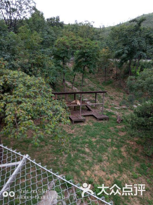 石家庄动物园图片 - 第2张