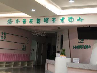 小荷花舞蹈艺术中心